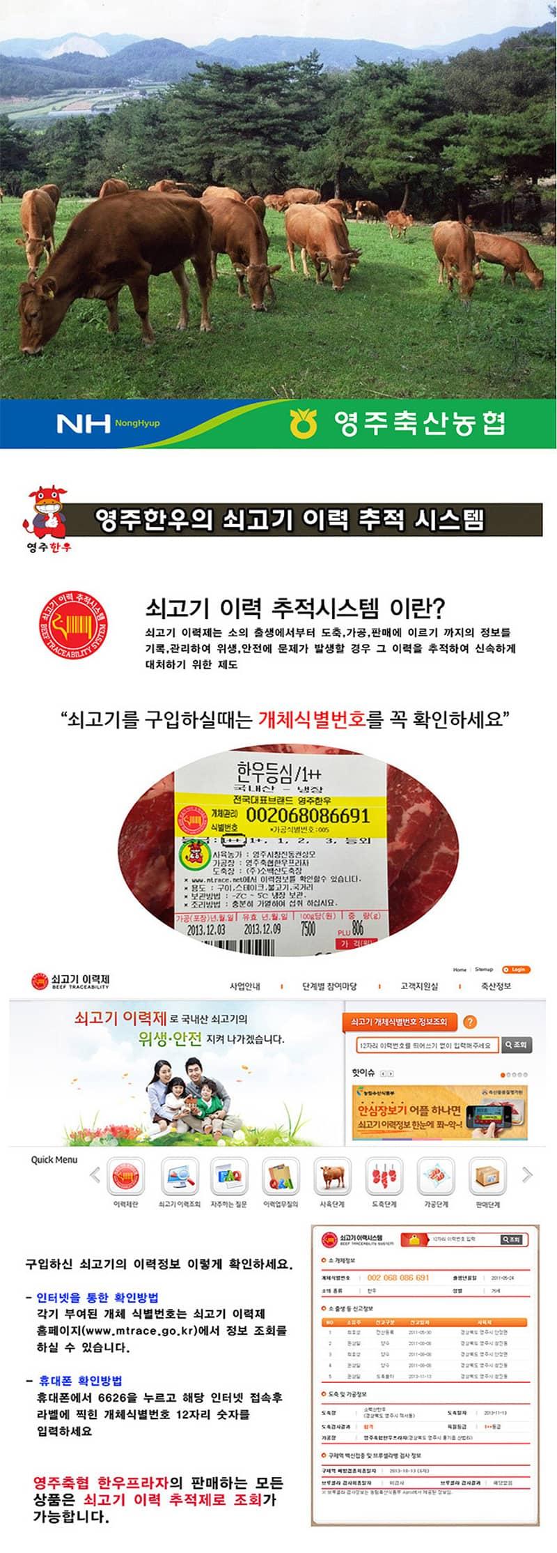 yeongjuchughyeob-yeongju_hanu_teugseon_4ho_detail_800_4.jpg